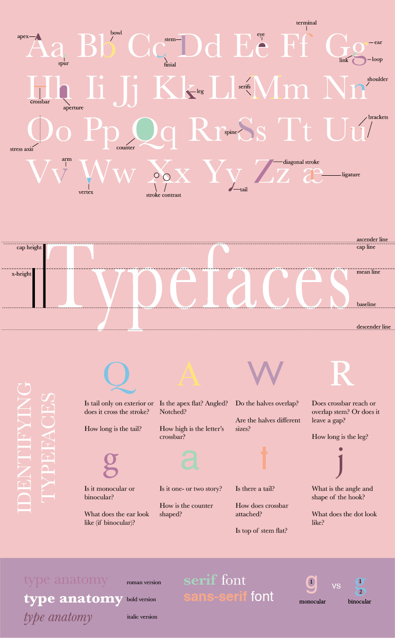Type Anatomy Poster